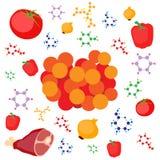 Molekulare Gastronomiekonzeptillustration Molekularer Kaviar vom Fleisch, Gemüse Lizenzfreie Stockbilder