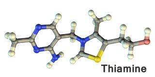 Molekulares Modell des Vitamins B1, Thiamin stock abbildung
