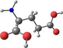 Molekylär struktur av Glutamic syra som isoleras på vit bakgrund Arkivfoto