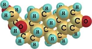Molekylär struktur för Hydrocortisone Royaltyfri Fotografi