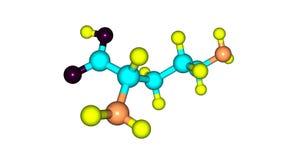 Molekylär struktur för Ornithine som isoleras på vit Arkivbild