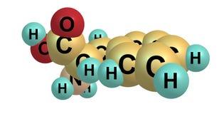 Molekylär struktur för Phenylalanine som isoleras på vit Royaltyfri Fotografi