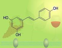 Molekylär struktur för Resveratrol Arkivbild