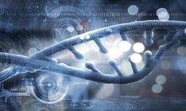 Molekyl av DNA:t Arkivfoto