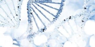 Molekyl av DNA:t Arkivbild