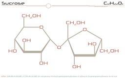 Molekyl av sucrose vektor illustrationer