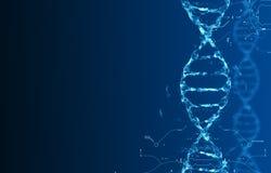 Molekylar av DNA:t Royaltyfria Foton