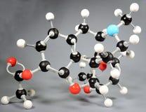 Molekylmodell av heroin C12H22O11 royaltyfria foton