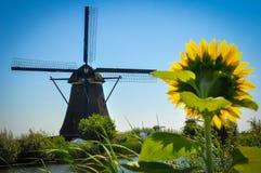 Molens door de Rivier in Kinderdijk royalty-vrije stock afbeelding