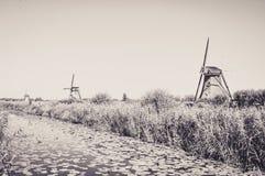 Molens door de Rivier in Kinderdijk stock foto's