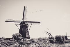 Molens door de Rivier in Kinderdijk stock afbeelding