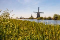 Molens van Kinderdijk Stockfotografie