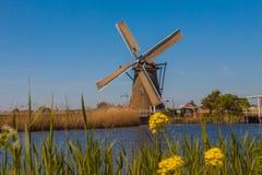 Molens van Kinderdijk Fotografia Stock