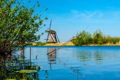 Molens van Kinderdijk Immagine Stock Libera da Diritti