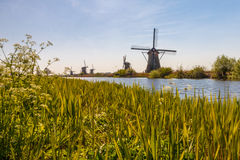Molens van Kinderdijk Stock Photography