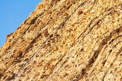 Moler на мехе острова Стоковое Изображение RF