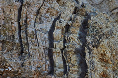 Moler on island Fur. Moler deposits showing the earth layers Stock Images