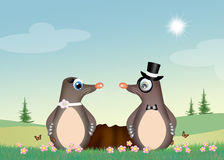 Moles couple in the den. Illustration of moles couple in the den Royalty Free Stock Photography