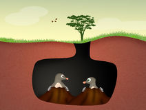 Moles in the den. Illustration of moles in the den Stock Photography