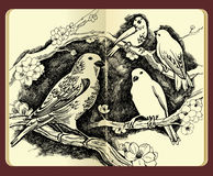 Moleskine drawing of birds flowers and branches Stock Photo