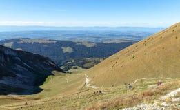Moleson Pré alpes Montagne Vue Paysage image stock