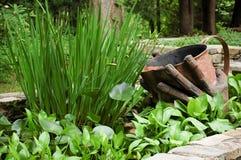 Molhando as plantas Fotografia de Stock