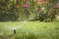 Molhando o jardim Imagem de Stock Royalty Free