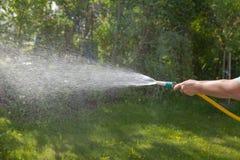 Molhando o jardim Mangueira em uma mão do ` s da mulher fotografia de stock royalty free