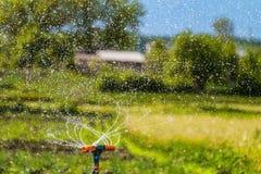 Molhando o jardim usando um sistema de extinção de incêndios da rotação fotos de stock royalty free