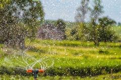 Molhando o jardim usando um sistema de extinção de incêndios da rotação Gotas da água foto de stock