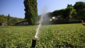 Molhar automático do gramado Pulverizador da grama Gramado verde na casa de campo M filme