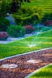 Molhar do jardim do quintal Imagem de Stock