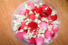 Molhe com jasmim e corola das rosas na bacia Imagem de Stock Royalty Free