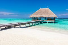 Molhe de madeira no oceano azul em Maldivas fotos de stock