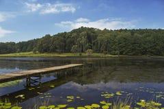 Molhe de madeira velho Streching para fora no lago Fotografia de Stock Royalty Free