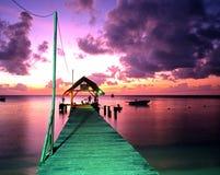 Molhe do ponto do pombo, Tobago fotografia de stock