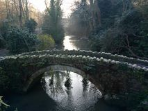 Molhe a geada de pedra fria do inverno do parque da ponte das árvores do lago Imagens de Stock Royalty Free