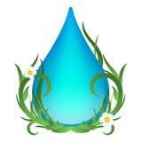 Molhe a gota com folhas, as flores e grama verdes Ilustração do vetor da ecologia no fundo branco Imagens de Stock