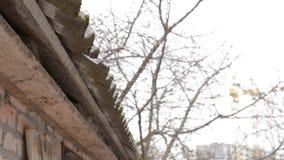 Molhe gotas lentamente de cimento da fibra e de telhado ondulados do asbesto filme