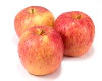 Molhe maçãs vermelhas e molhe gotas no fundo branco com clippin fotos de stock royalty free