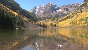 Molhe na parte inferior do vale do outono no álamo tremedor vídeos de arquivo