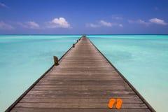 Molhe na praia Fotos de Stock Royalty Free
