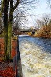 Molhe o canal e as árvores imagens de stock royalty free
