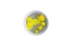 Molhe o dipper com as flores do chuveiro dourado, festival de Songkran Foto de Stock