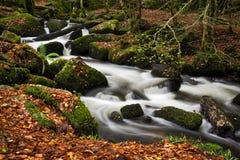 Molhe o fluxo ao lado dos moinhos velhos da pólvora, vale de Kennall, Cornualha Fotos de Stock Royalty Free