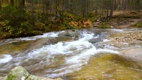 Molhe o fluxo no rio Eresma no parque natural de Boca del Asno em um dia chuvoso em Segovia, Espanha vídeos de arquivo