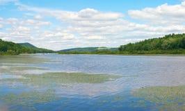 Molhe o lago com waterlilies e reflexões e montanhas do céu nebuloso Fotografia de Stock