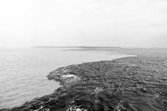 Molhe a reunião no rio de Brasil - de amazon com rio del negro Imagens de Stock