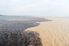 Molhe a reunião no rio de Brasil - de amazon com rio del negro Foto de Stock