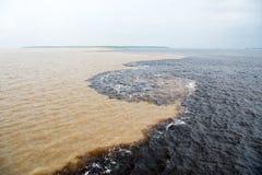 Molhe a reunião no rio de Brasil - de amazon com rio del negro Imagens de Stock Royalty Free